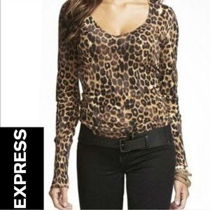 EXPRESS Leopard Print V-Neck Sweater Small
